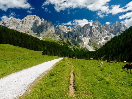 Val Venegia, col passeggino in paradiso