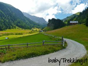 Col passeggino in Val Duron