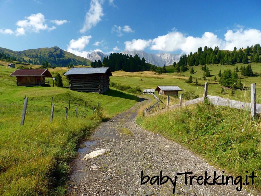 Rifugio Zallinger, coi bambini tra i verdi prati dell'Alpe di Siusi