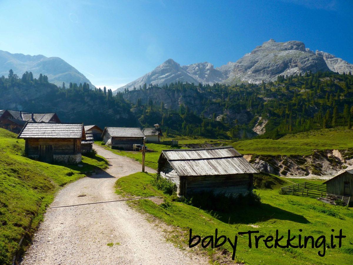 Rifugio Fodara Vedla, alla scoperta degli alpeggi coi bambini