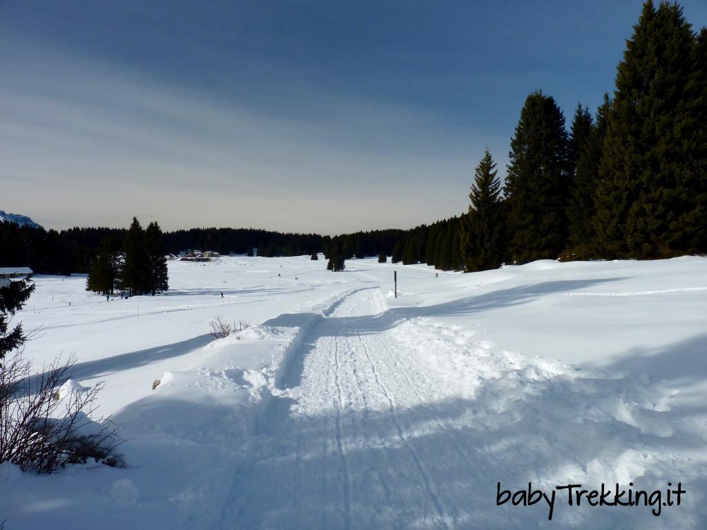 Col passeggino sugli sci a Millegrobbe, sull'Alpe Cimbra innevata