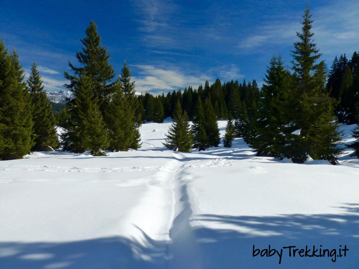 Bambini e ciaspole a Passo Coe, sull'Alpe Cimbra con la neve