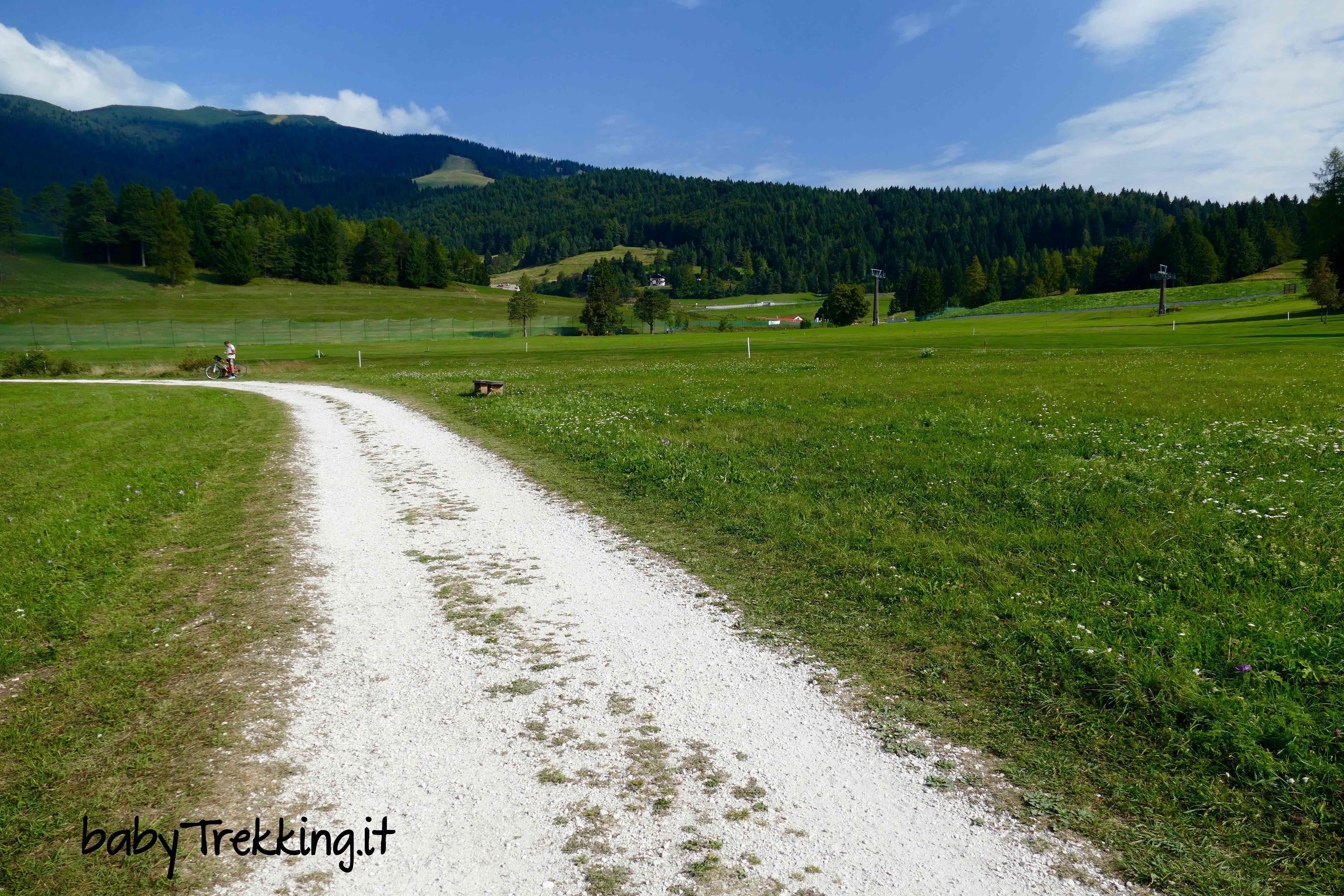 Torbiera di Echen, sull'Alpe Cimbra in passeggino alla scoperta del biotopo