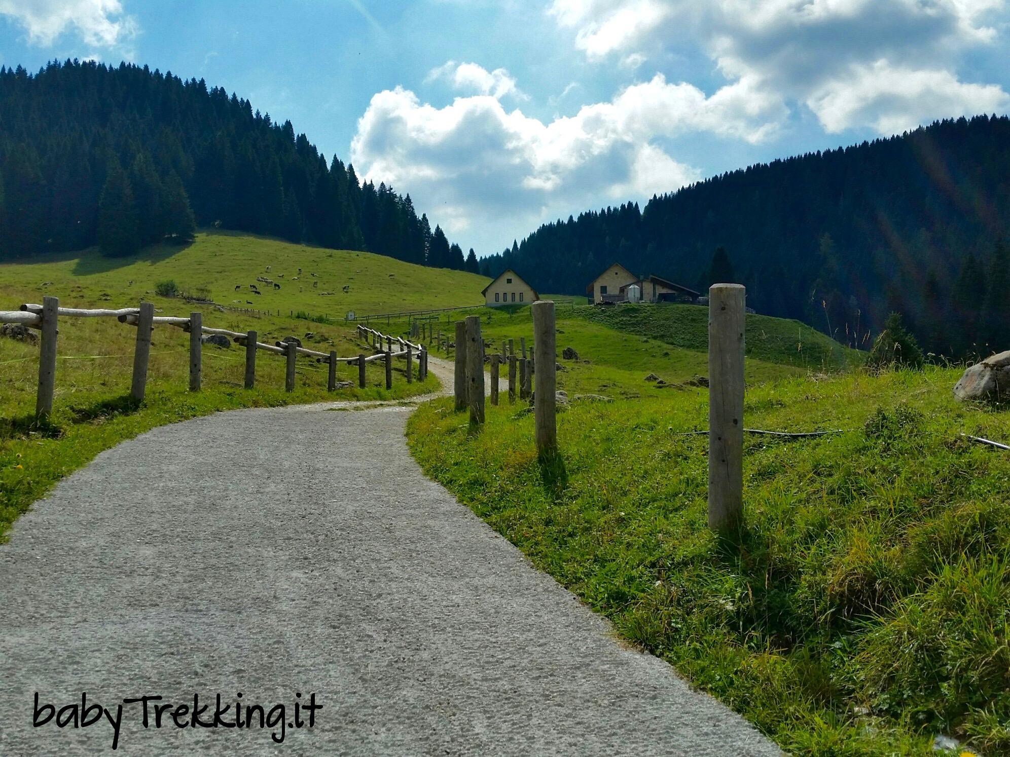 Alpe Cimbra e bambini: a Malga Vallorsara col passeggino