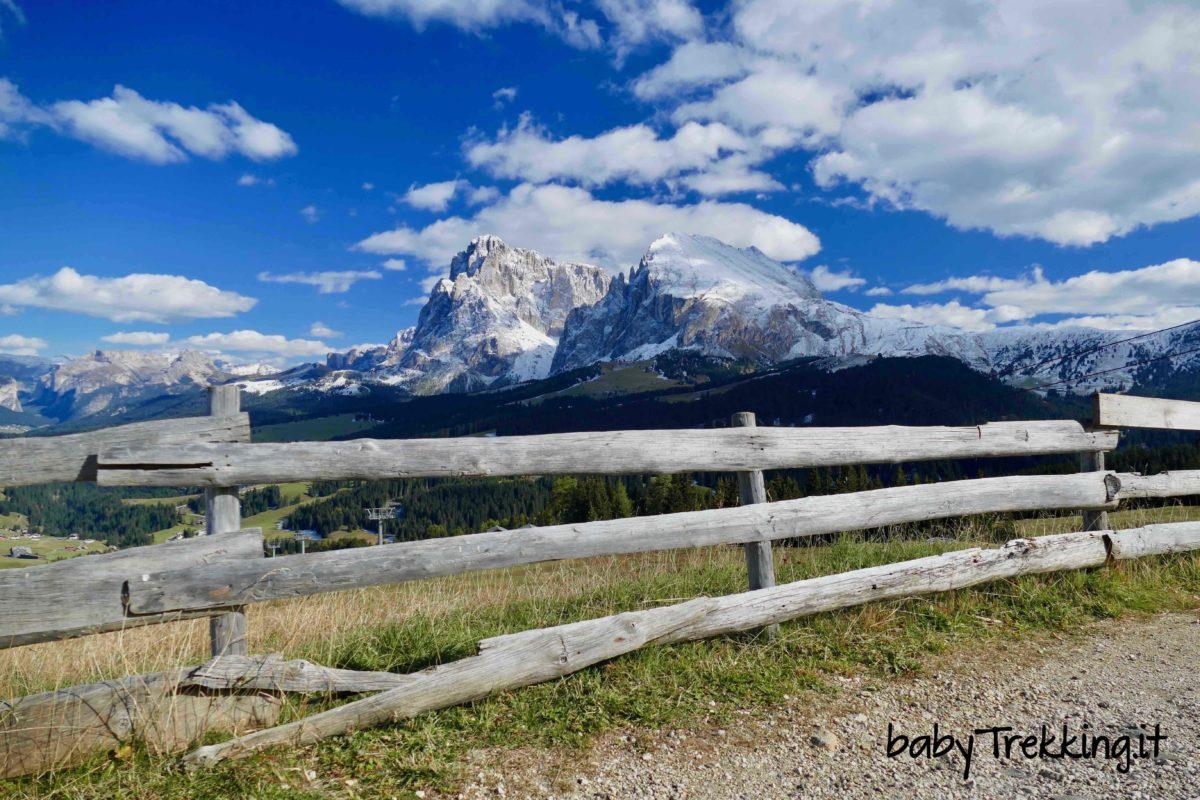 Malga Laranzer Schwaige, a spasso per l'Alpe di Siusi in passeggino