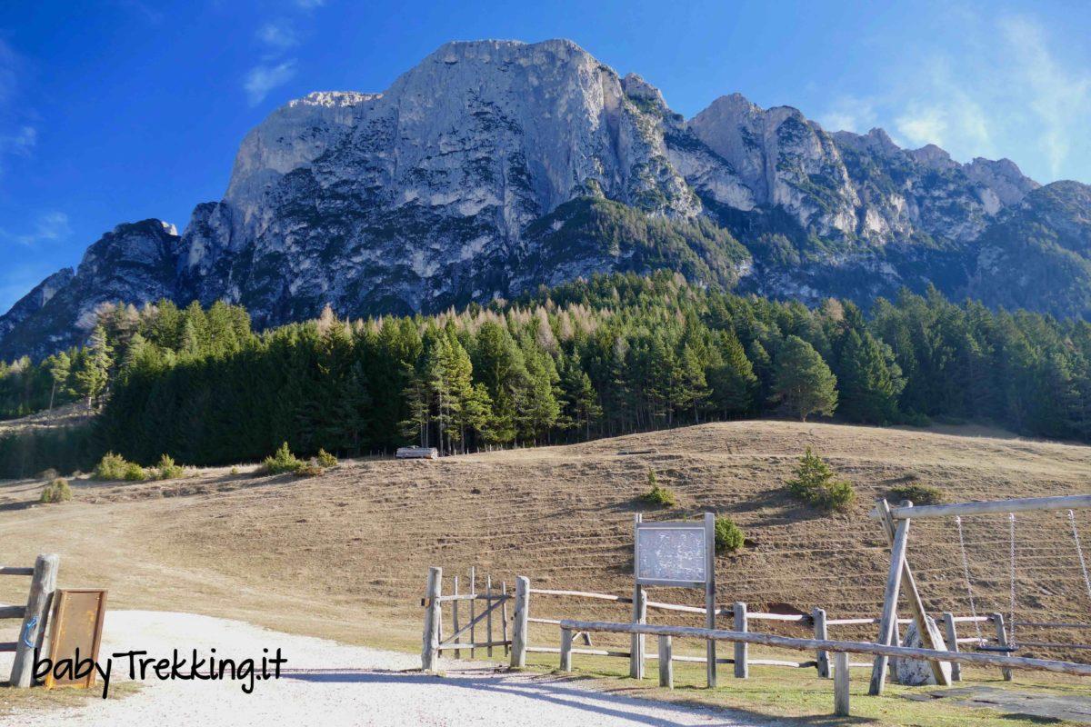 Tuffalm, la malga più bella dell'Alto Adige: sotto lo Sciliar coi bambini