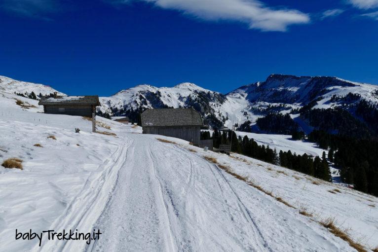 In inverno sull'Alpe di Pampeago, coi bambini in mezzo alla neve