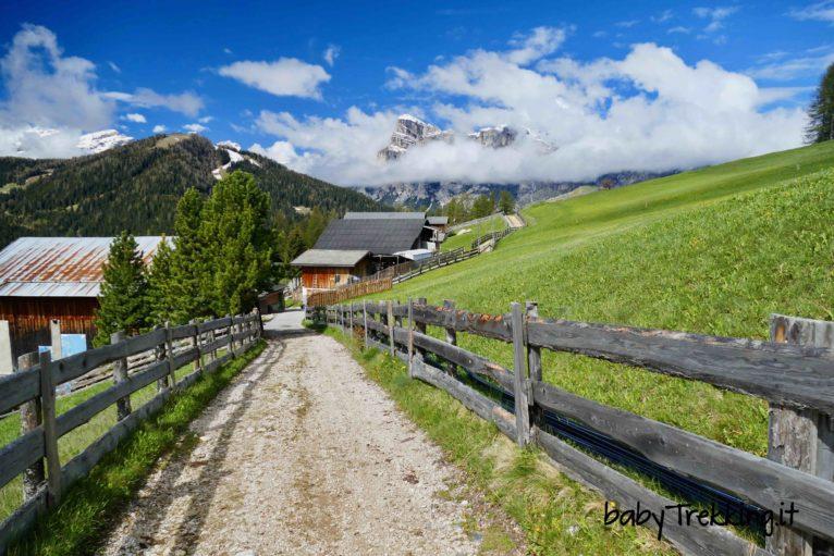 Il sentiero dei larici, percorso didattico per bambini in Alta Badia
