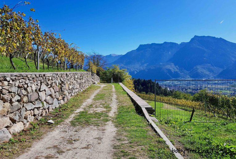 Da Levico al Forte Colle delle Benne: col passeggino vista Valsugana