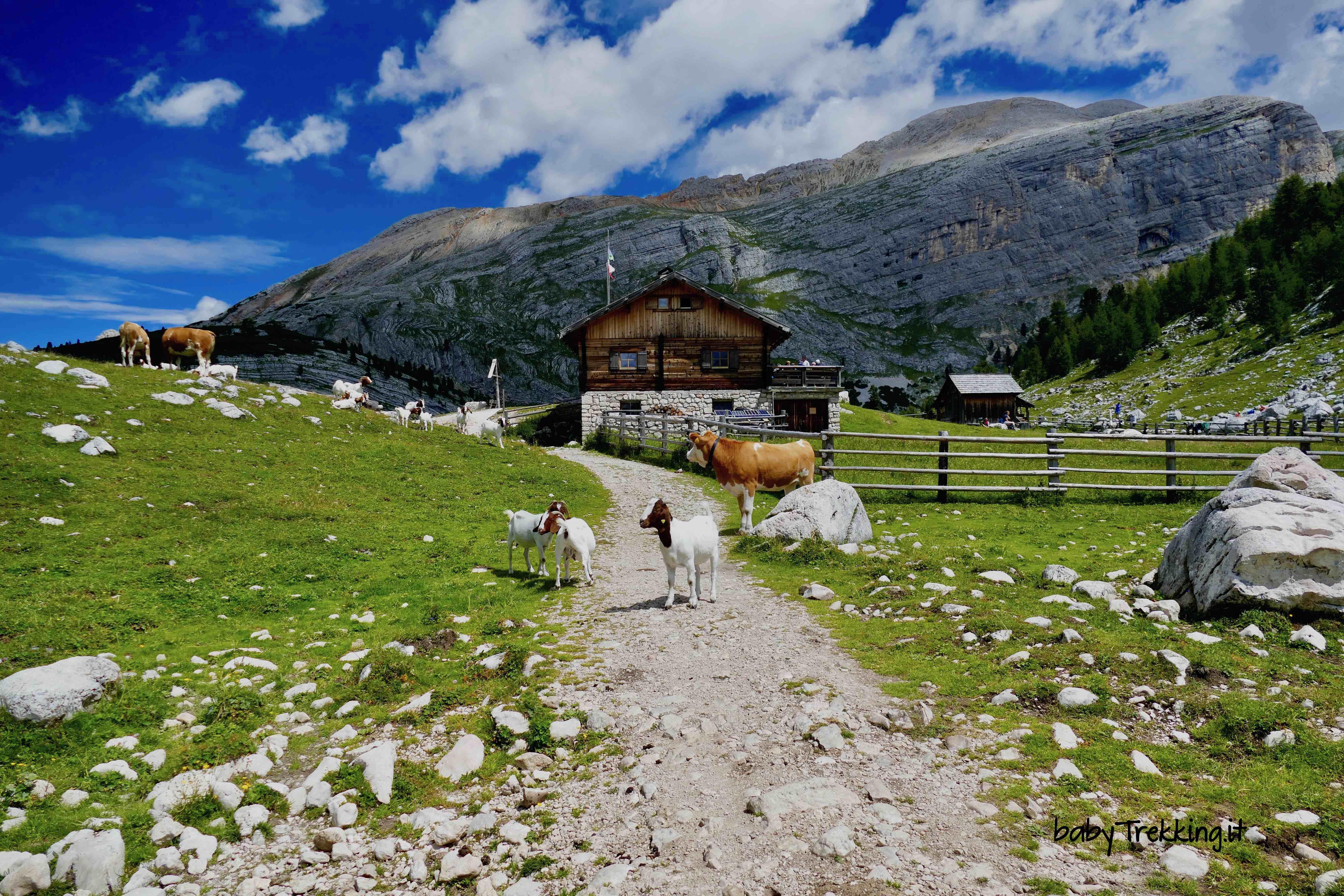 Coi bambini sull'Altopiano di Fanes, culla delle leggende delle Dolomiti