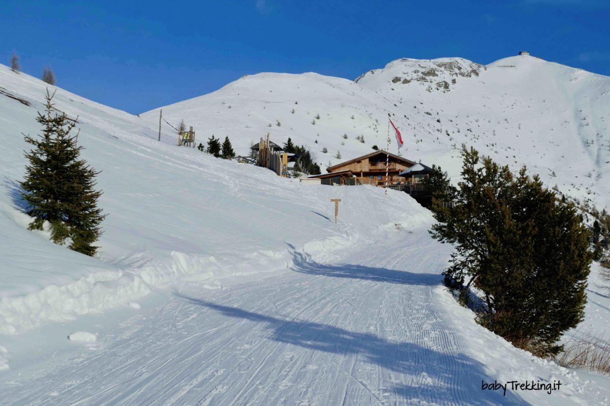 Sul Monte Elmo in Val Pusteria: con le ciaspole al Rifugio Gallo Cedrone
