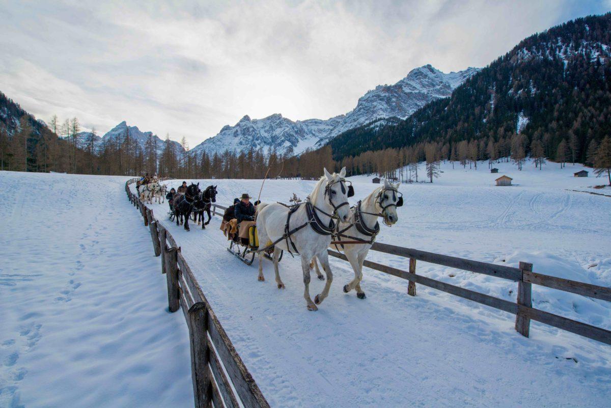 Slitta coi cavalli in Val Fiscalina: magia invernale in Val Pusteria