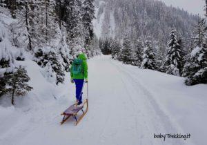 A Sillian coi bambini: con lo slittino nella Winkeltal, incanto bianco in Tirolo