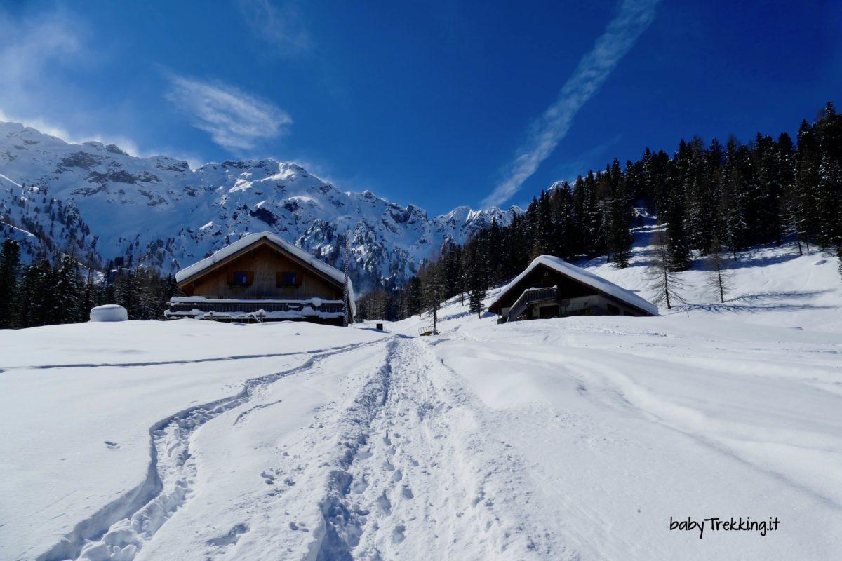 Val Monzoni con le ciaspole, in Val di Fassa in inverno