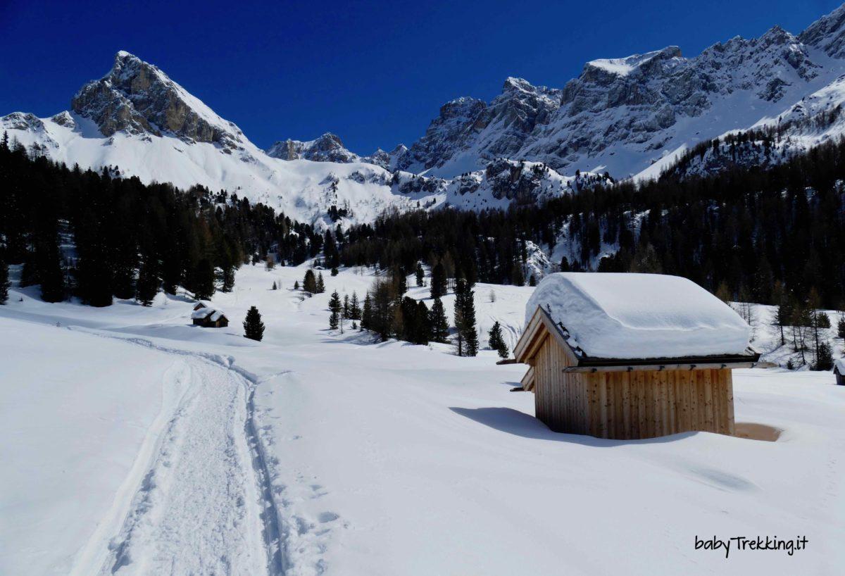 Valle San Nicolò con le ciaspole, bianchi silenzi in Val di Fassa