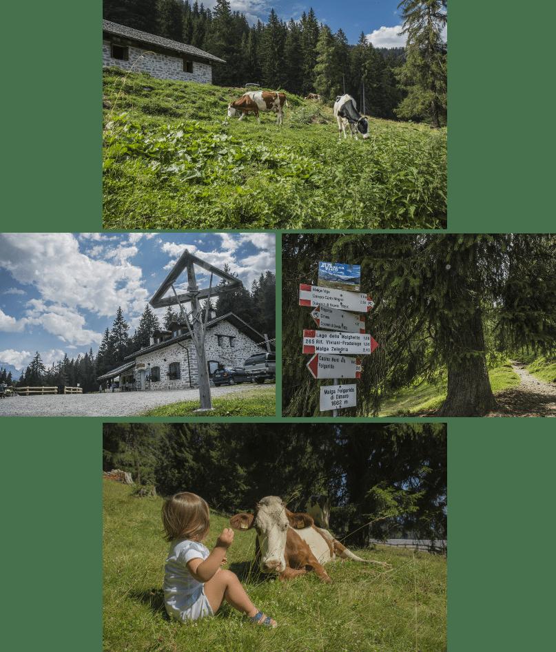 Lago delle Malghette: coi bambini tra Val di Sole e Campiglio