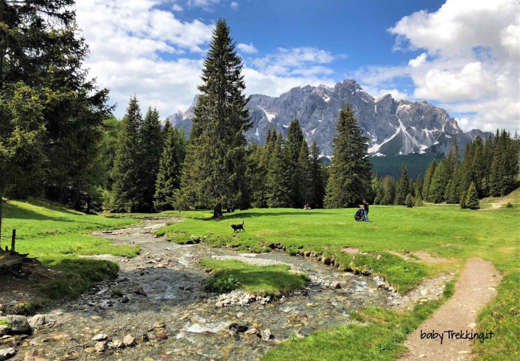 Alpe di Nemes e Malga Nemes, in Val Pusteria con passeggino e cani