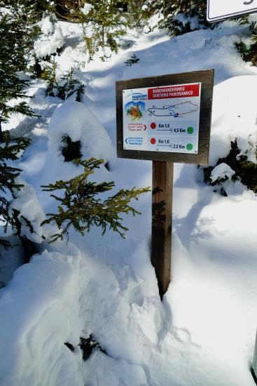 Percorso panoramico Flaner Jochl sul Monte Cavallo: ciaspole per bambini