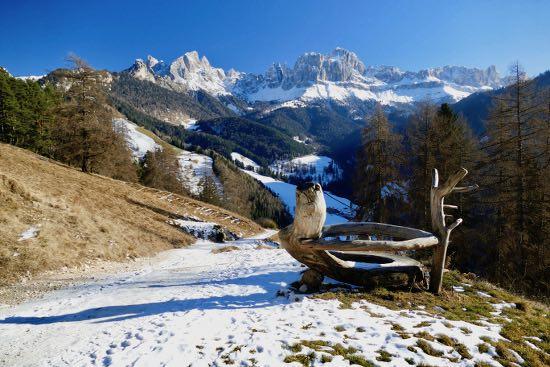 Al laghetto Wuhnleger con le ciaspole: incantevole Catinaccio!
