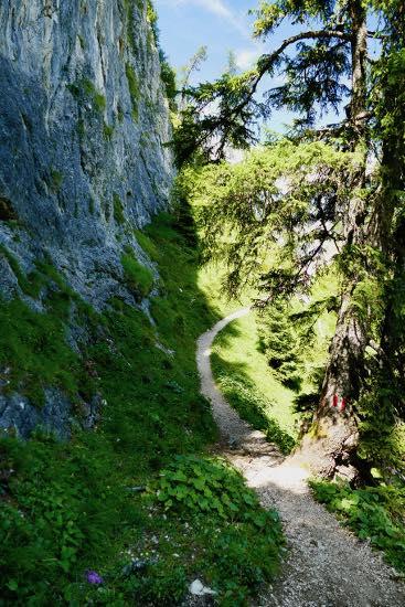 Rifugio Gardenacia, verdi prati e le magnifiche vette dell'Alta Badia