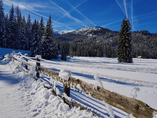 Armentarola in inverno