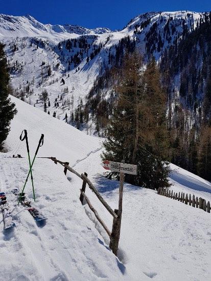 Steinzgeralm
