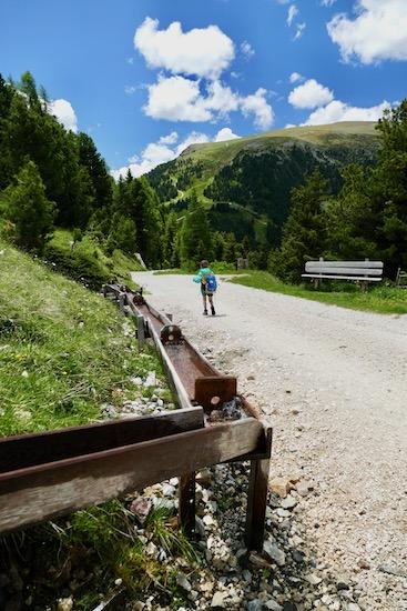 Latemar Alp