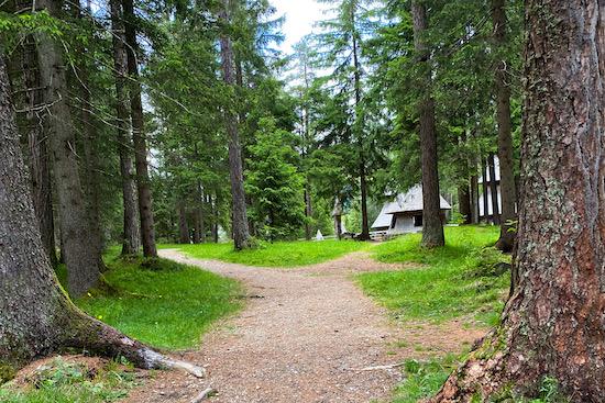 Villaggio degli Alberi passeggino