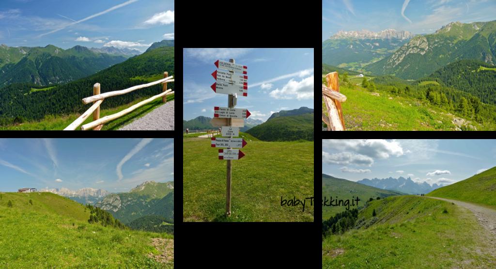 A spasso col passeggino sull'Alpe Lusia