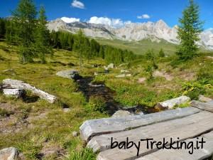 Bambini in vacanza al Passo San Pellegrino