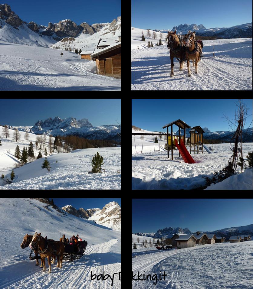 Vacanze sulla neve per grandi e picccini al Passo San Pellegrino