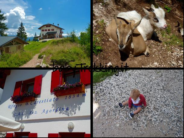 Rifugio Carestiato, coi bambini tra Agordino e Zoldo