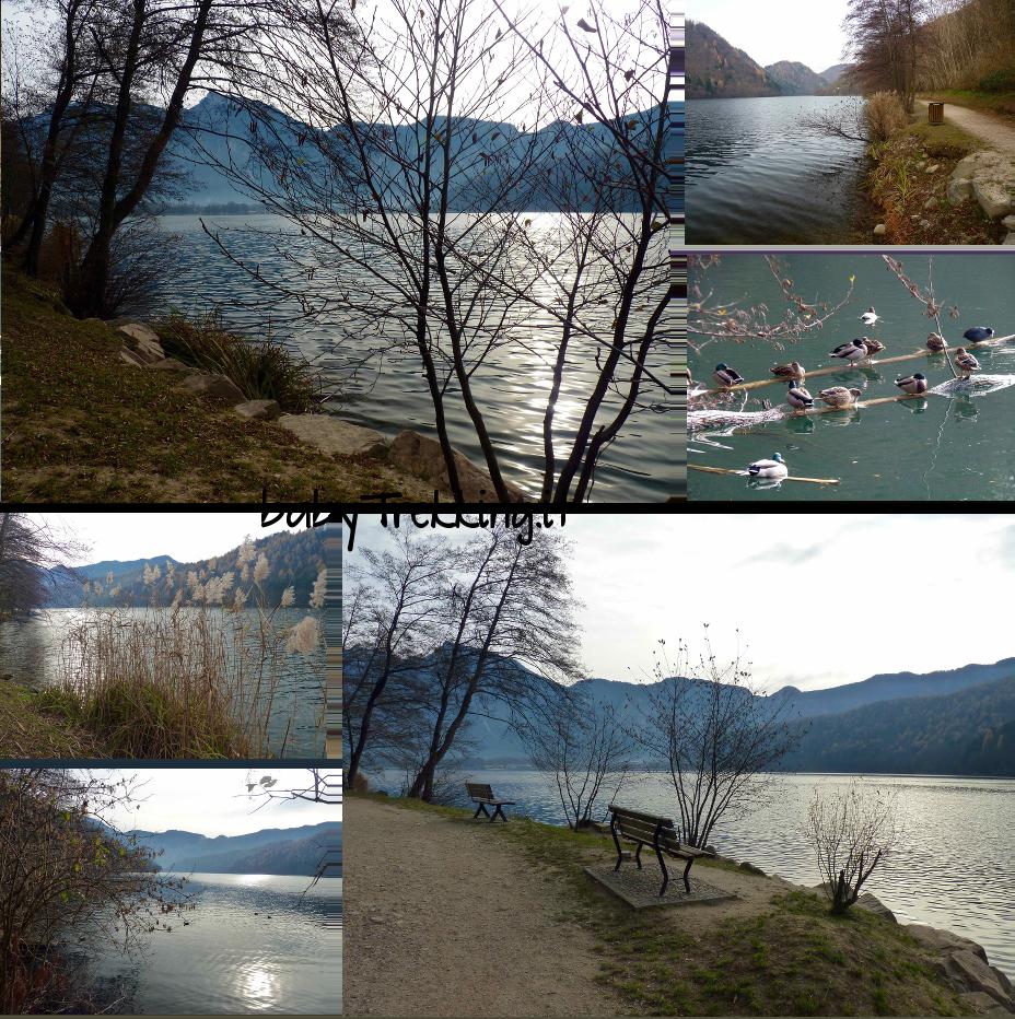 Al lago di Levico coi bambini: la Strada del Pescatore