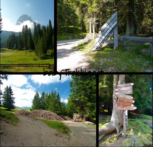 Da Monte Pana a Baita Saltner: coi bambini all'Alpe di Siusi