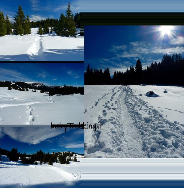 Coi bambini sull'Alpe Cimbra, tanto divertimento sulla neve