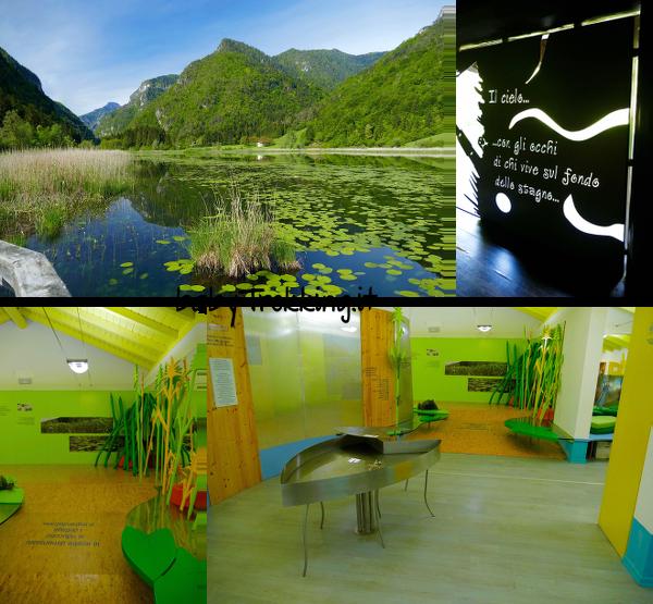 Lago d'Ampola, bambini alla scoperta del biotopo in Valle di Ledro