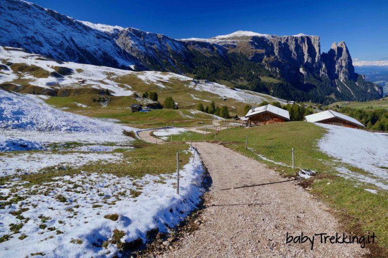 Malga Sattler Schwaige, col passeggino sull'Alpe di Siusi