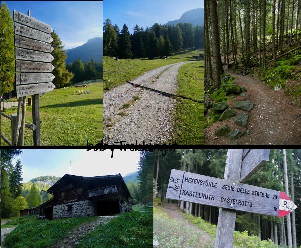 Alpe di Marinzen, verde paradiso dei bambini sopra Castelrotto