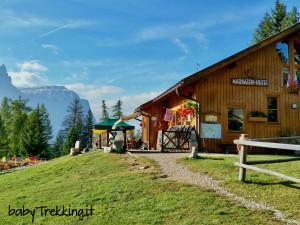 Alpe di Marinzen