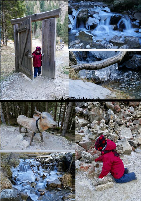 Malga Fane, coi bambini al cospetto dei monti di Fundres