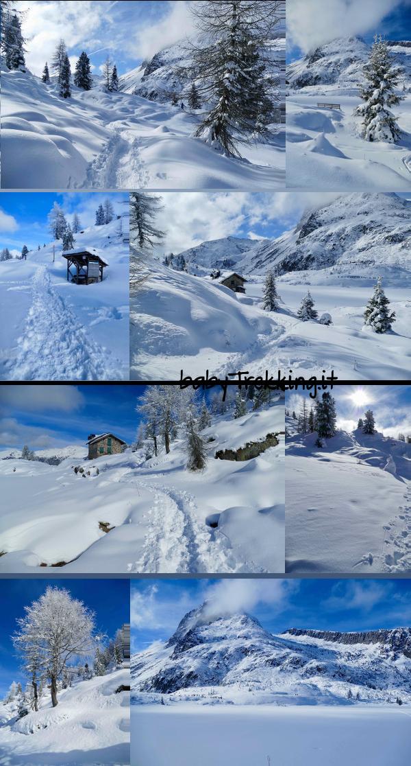Laghi di Colbricon in inverno: con le ciaspole tra soffice neve