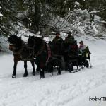 Gita in slitta nei boschi di San Martino di Castrozza: che magia per i bambini!