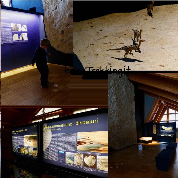 Museo Vittorino Cazzetta di Selva di Cadore: un tuffo nella preistoria