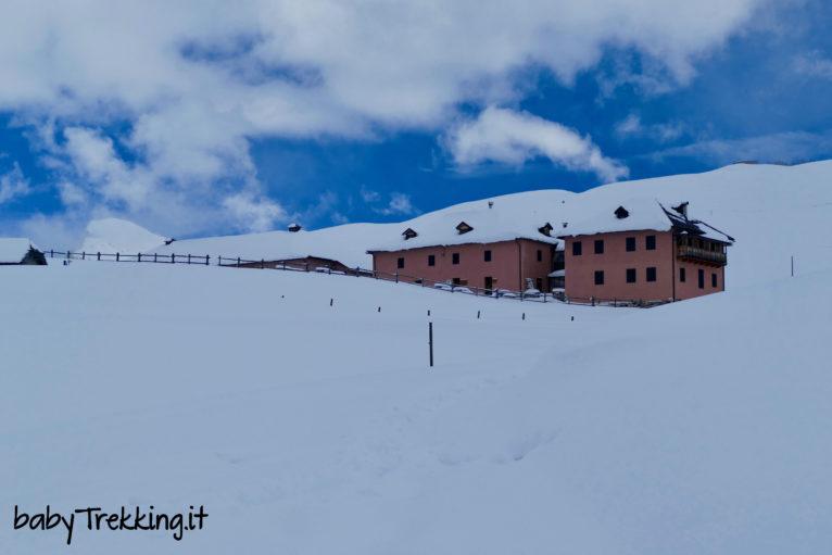 A Malga Juribello tra soffice neve: con le ciaspole nel Parco Naturale di Paneveggio