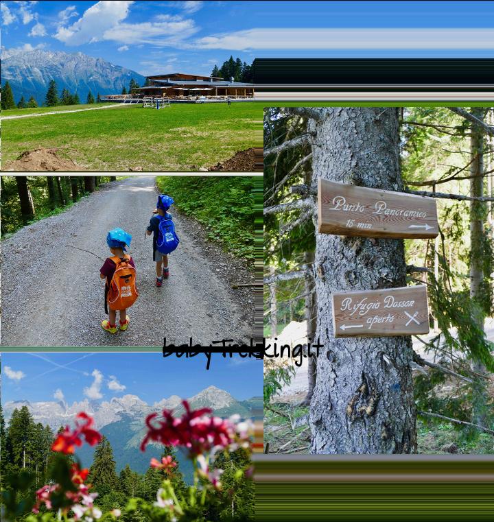 Dal Dosson al Rifugio Meriz: sulla Paganella con bambini e passeggino