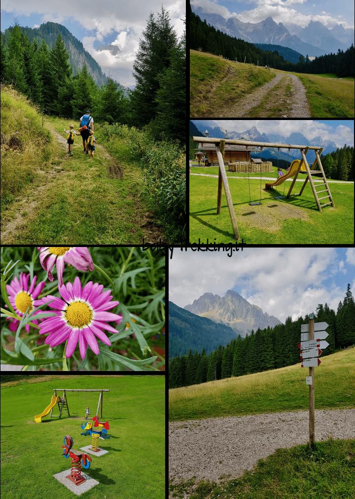 Malga Ces, col passeggino sui sentieri vista Pale di San Martino