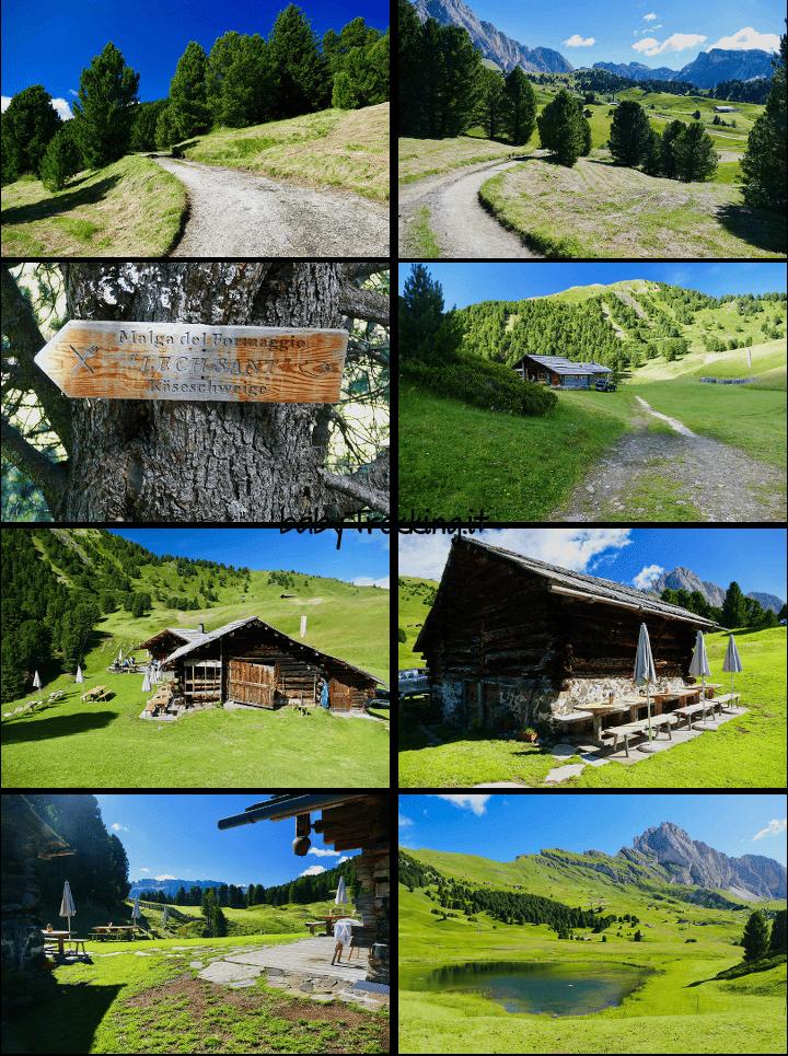 Malga Lech Sant: coi bambini nel verde incanto della Val Gardena