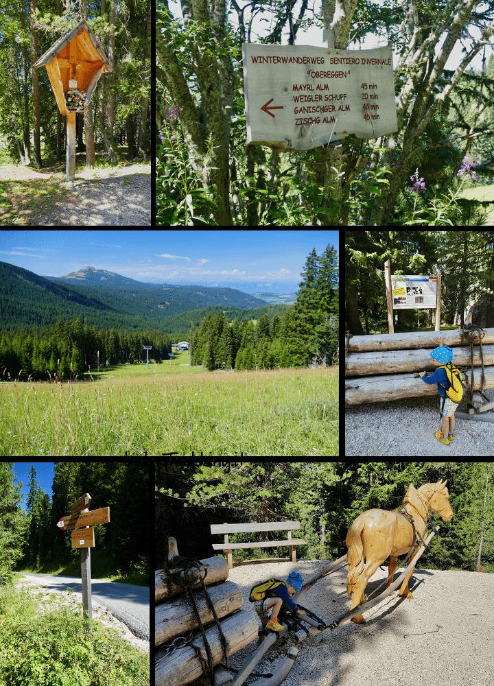 Sull'Alpe di Pampeago col passeggino: in Val d'Ega coi bambini