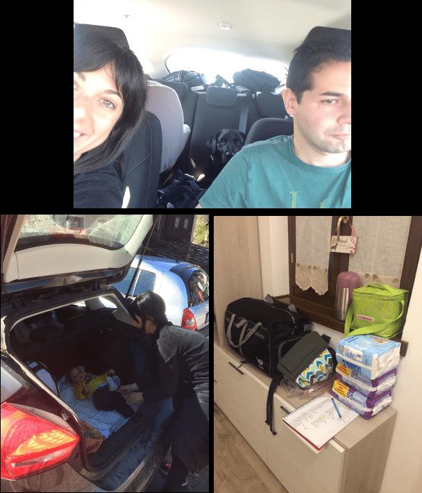Come organizzare gli spazi bambino - cane in viaggio