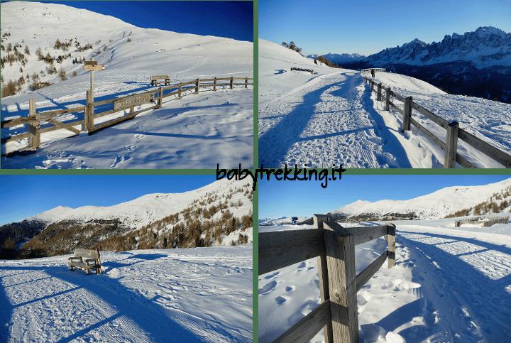Malga Klammbachalm: con le ciaspole tra le Dolomiti della Val Pusteria
